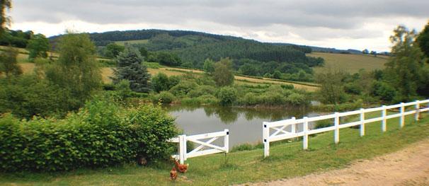 Les Deux Etangs View from Sureau